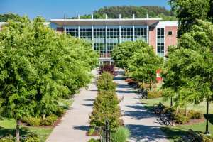 An image of University of North Georgia building, looking down the pathways that are surrounded in green trees and bushes.