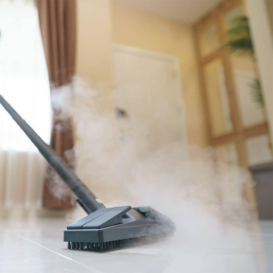 10 best steam cleaner for tile floors