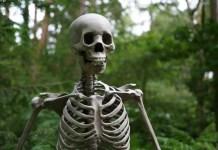 skeleton Pick Up Lines