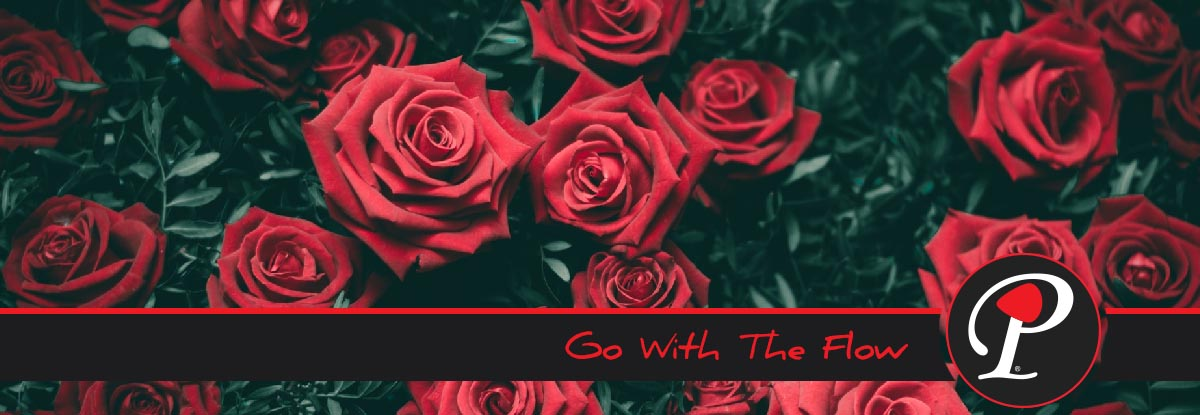 Lyric roses outkast lyrics : Go With The Flow | Pickxen | Americana Music | Atlanta, GA