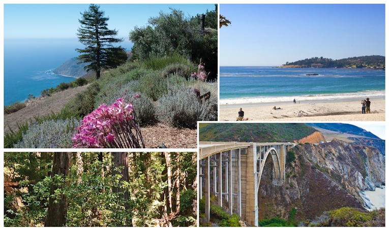 monterey collage 1