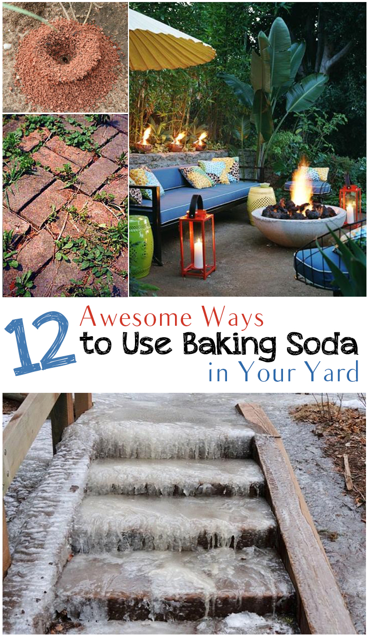 12 Awesome Ways To Use Baking Soda In Your Yard Picky Stitch