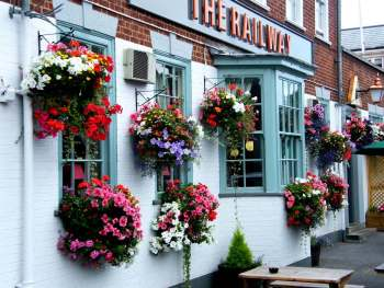 10 Hanging Baskets for the 4th of July9