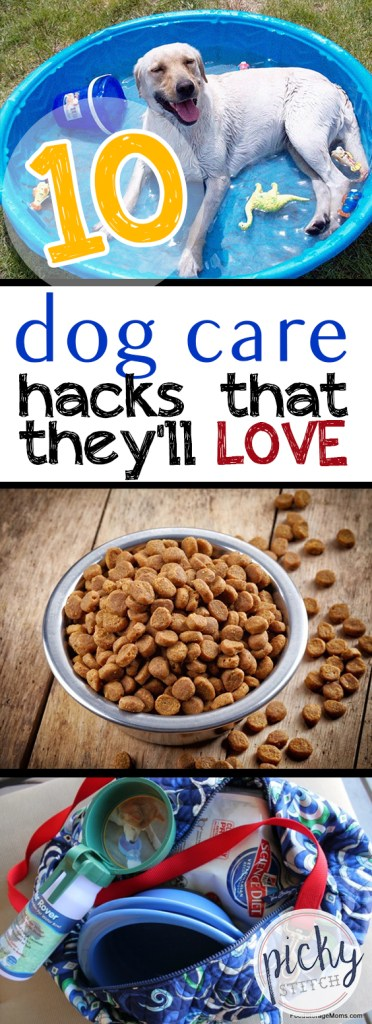 10 Dog Care Hacks That They'll LOVE|Dog Care, Dog Care Hacks, Pet Care, Pet Care Hacks, Easy Pet Care, Pet Care TIps and Tricks #DogCare #PetCare #LifeHacks #Hacks
