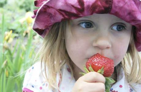 Picnic børnefamilie jordbær
