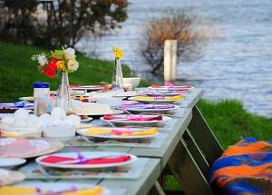 Se den fine omtale af picnicfestivalen i Furesø avisen