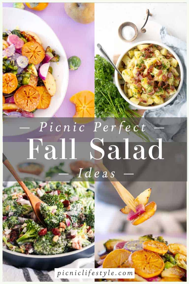 """Collage of fall salads with text overlay """"picnic perfect fall salad ideas."""