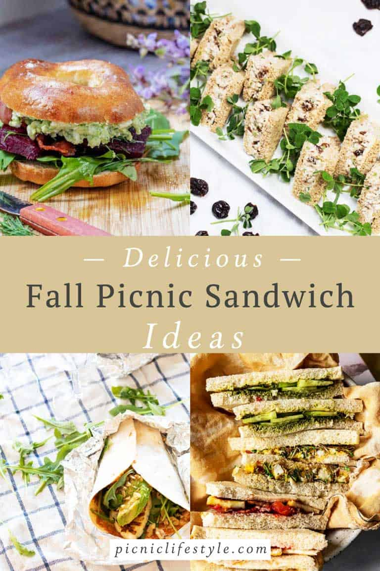 Collage of Fall picnic sandwich ideas.