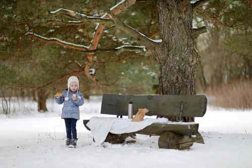 Young child in the snow having a picnic lunch on a bench.