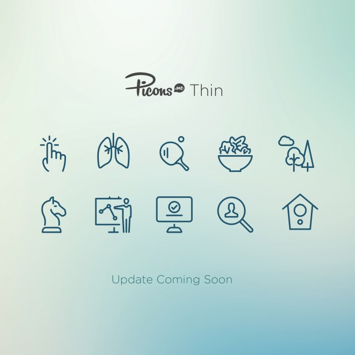 Picons Thin Update 2