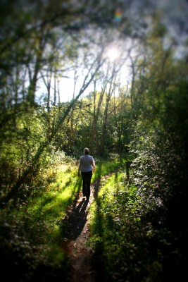 Day 38 – Afternoon stroll