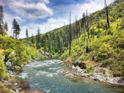 Day 271 – Into the Sierras