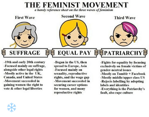 the feminist movement a