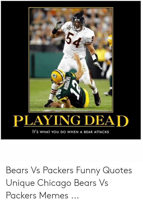 Chicago Bears Memes 2019 : chicago, bears, memes, PLAYING, ATTACKs, Bears, Packers, Funny, Quotes, Unique, Chicago, Memes, Awwmemes.com