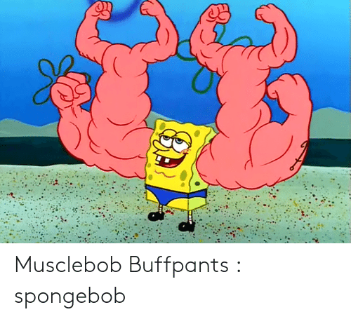 musclebob buffpants spongebob spongebob