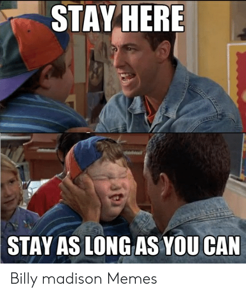 Billy Madison Back To School Meme : billy, madison, school, Memes, About, Borophyll
