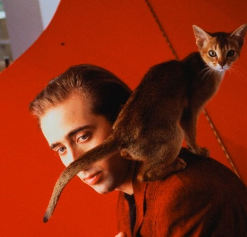 Nicolas Cage with cat