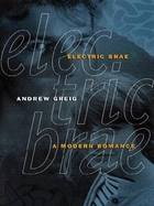 Electric Brae by Andrew Greig
