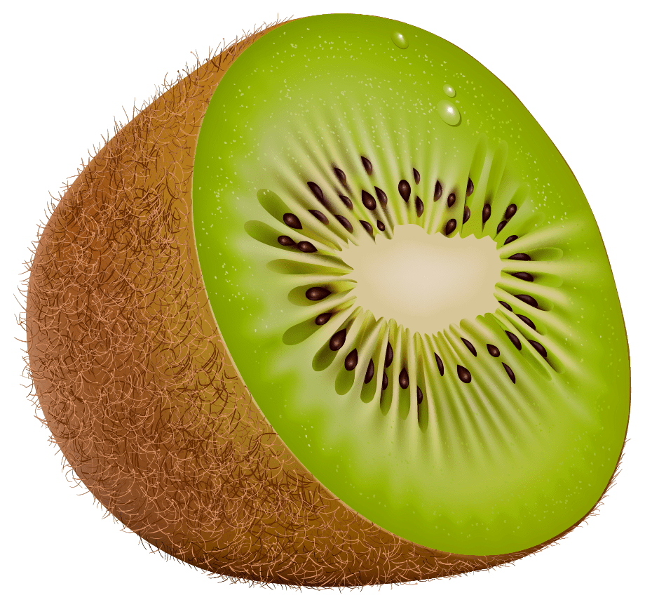 hight resolution of kiwi png clipart