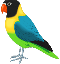 multicolored bird png clipart [ 2725 x 3081 Pixel ]