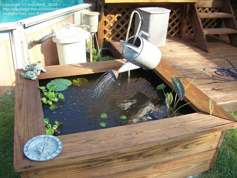 Cheap Garden Ponds