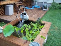 Water Gardening: Raised Ponds easy, cheap, fun and ...