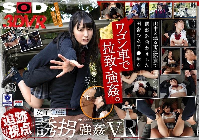 【VR】【追跡視点】女子●生 誘拐強●VR