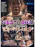 「お仕置き乳首奴隷 ドマゾ乳首に開発され乳首イキする女達 3」のサンプル動画