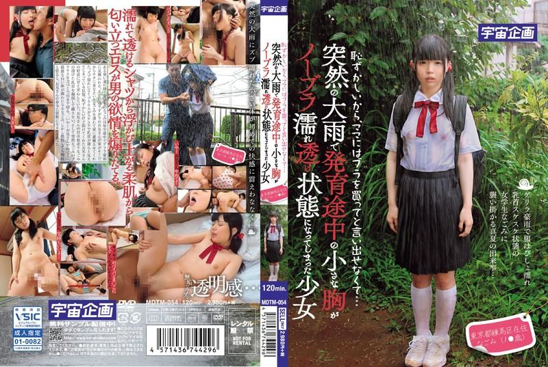 「恥ずかしいから、ママにはブラを買ってと言い出せなくて…突然の大雨で発育途中の小さな胸がノーブラ濡れ透け状態になってしまった少女 東京都練馬区在住 なごみ(1●歳)」のジャケット写真