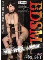 BDSM 緊縛×拘束具×人体固定 秋山祥子