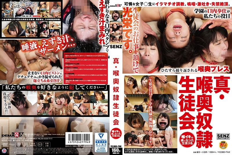 SDDE-541 True · Nolova Slave Student Association