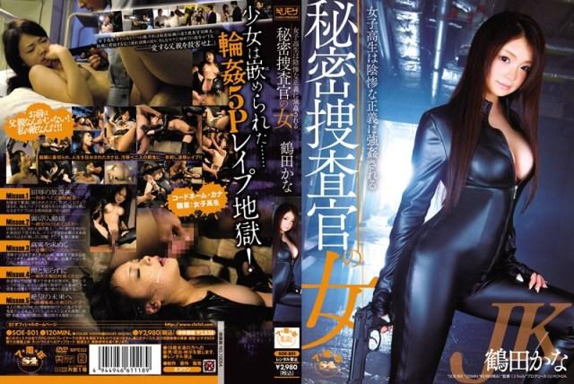 秘密捜査官の女 女子校生は陰惨な正義に強●される 鶴田かな