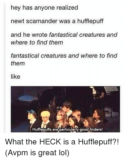 Hufflepuffs Are Particularly Good Finders : hufflepuffs, particularly, finders, Anyone, Realized, Scamander, Hufflepuff, Wrote, Fantastical, Creatures, Where, Hufflepuffs, Particularly, Finders!