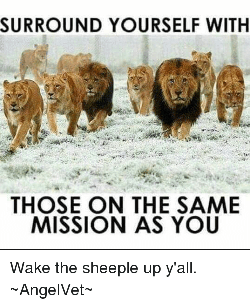Surround Yourself With Those On The Same Mission As You : surround, yourself, those, mission, SURROUND, YOURSELF, THOSE, MISSION, Sheeple, Y'all, ~AngelVet~, Esmemes.com