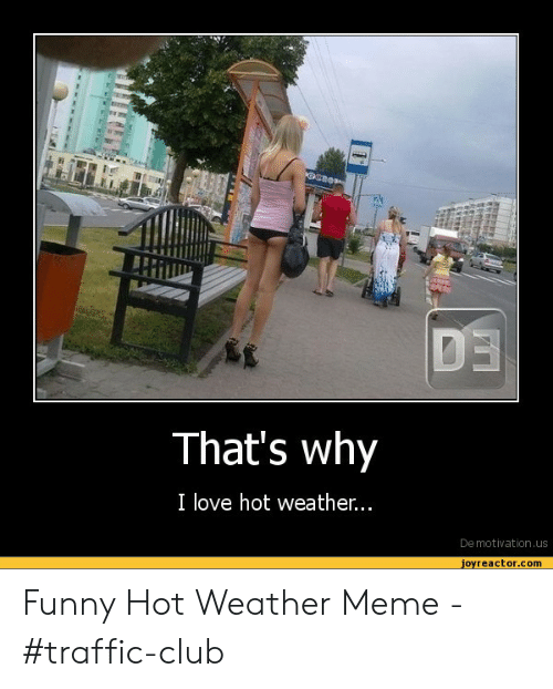 Hot Weather Meme : weather, Funny, Memes, Weather, Factory