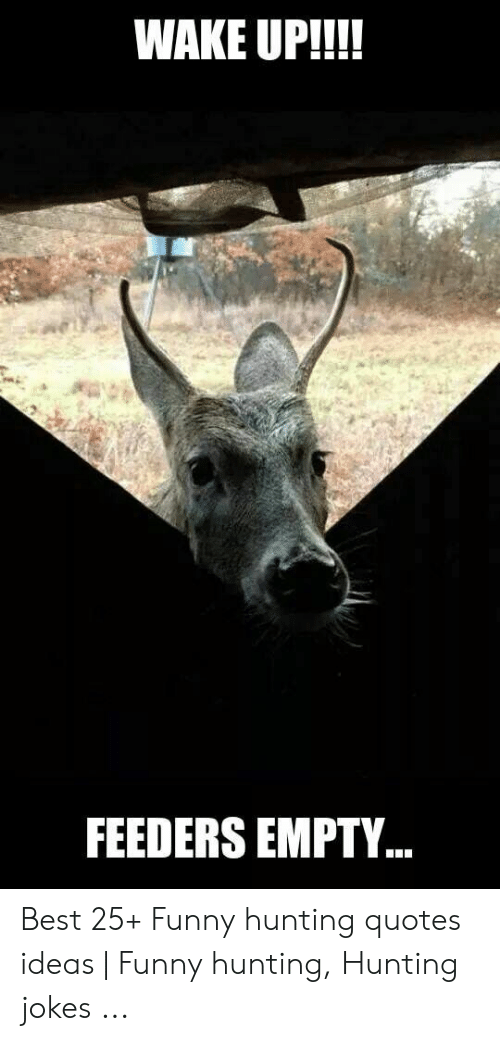 Funny Deer Captions : funny, captions, Funny, Hunting, Pictures, Jokes