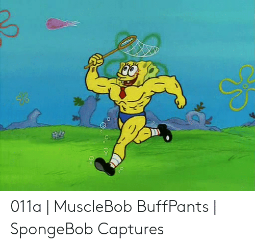 011a musclebob buffpants spongebob