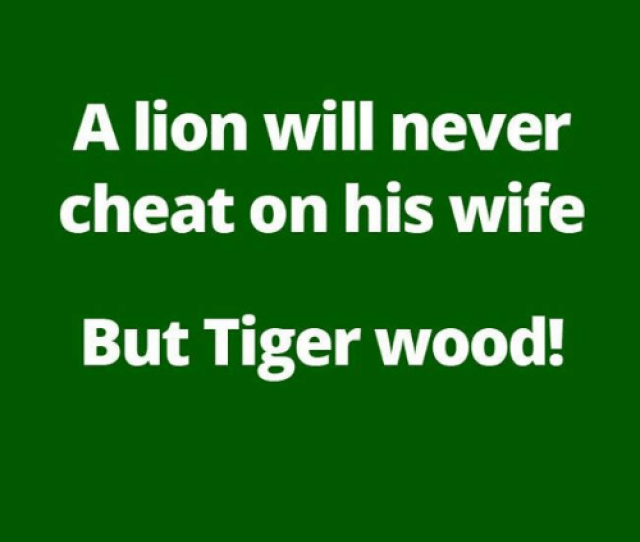 Memes Lion And Tiger A Lion Will Never Cheat On His Wife But