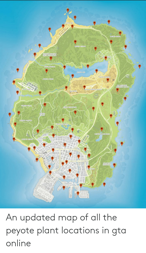Gta Peyote Locations : peyote, locations, Updated, Peyote, Plant, Locations, Online, ME.ME