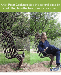 Artist Peter Cook Sculpted This Natural Chair by ...