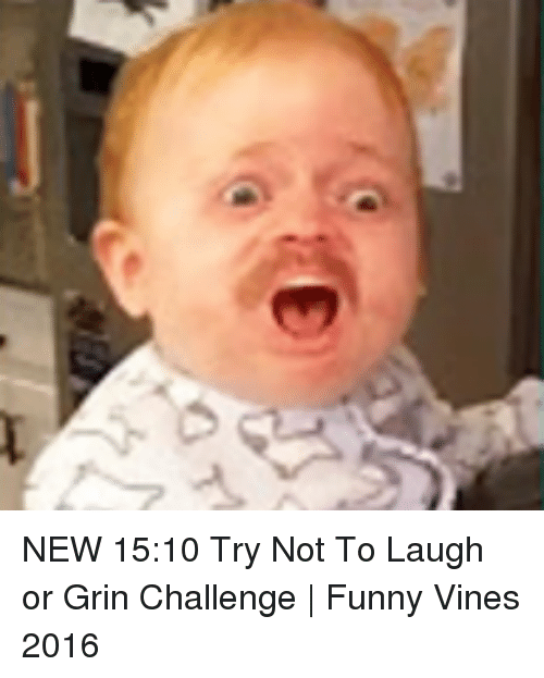 Try Not To Laugh Clean : laugh, clean, Laugh, Pictures, Funny