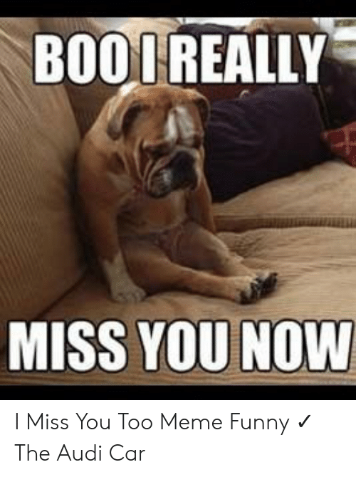 I Miss You Too Meme : Funny
