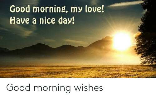 Good Morning My Love Have A Nice Day Good Morning Wishes Love