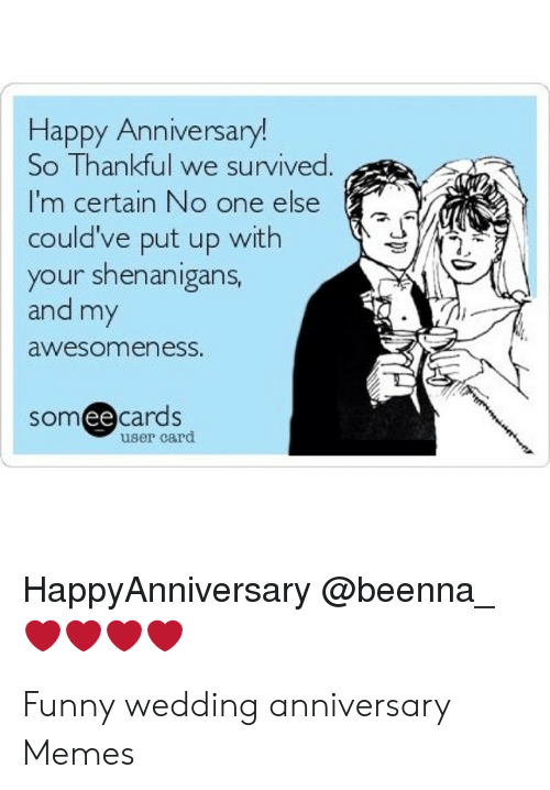 One Year Anniversary Memes : anniversary, memes, Happy, Anniversary!, Thankful, Survived, Certain, Could've, Shenanigans, AwesomenesS, Someecards, HappyAnniversary, Funny, Wedding, Anniversary, Memes