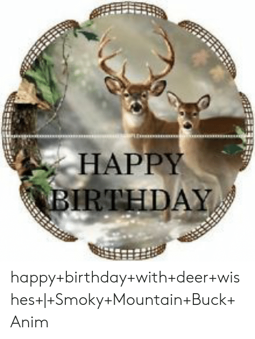 Happy Birthday Deer Meme : happy, birthday, HAPPY, BIRTHDAY, Happy+birthday+with+deer+wishes+|+Smoky+Mountain+Buck+Anim, Birthday, ME.ME