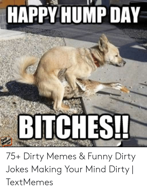 Hump Day Dirty Meme : dirty, Funny, Dirty
