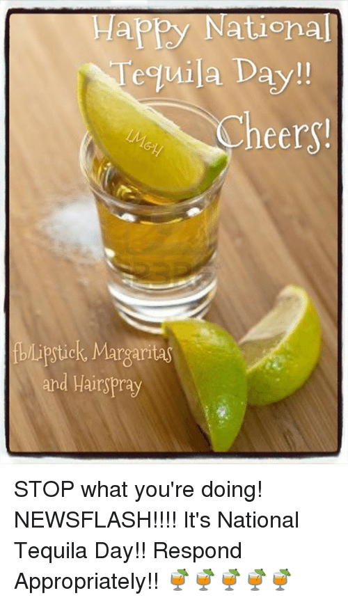 National Tequila Day Meme : national, tequila, Happy, Nationa, Tequila, Day!!, Lipstick, Margarita, Hairspray, You're, Doing!, NEWSFLASH!!!!, National, Respond, Appropriately!!, 🍹🍹🍹🍹🍹, ME.ME