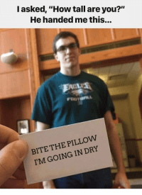 25+ Best Bite the Pillow Im Going in Dry Memes