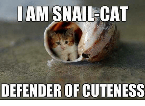 iam snallcat defender of