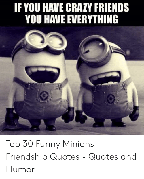 Crazy Friend Meme : crazy, friend, Crazy, Friends, Quotes, Images